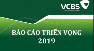 BÁO CÁO CHIẾN LƯỢC ĐẦU TƯ 2019 – VCBS