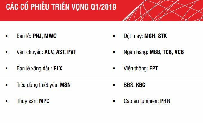 Danh mục cổ phiếu triển vọng Q1.2019